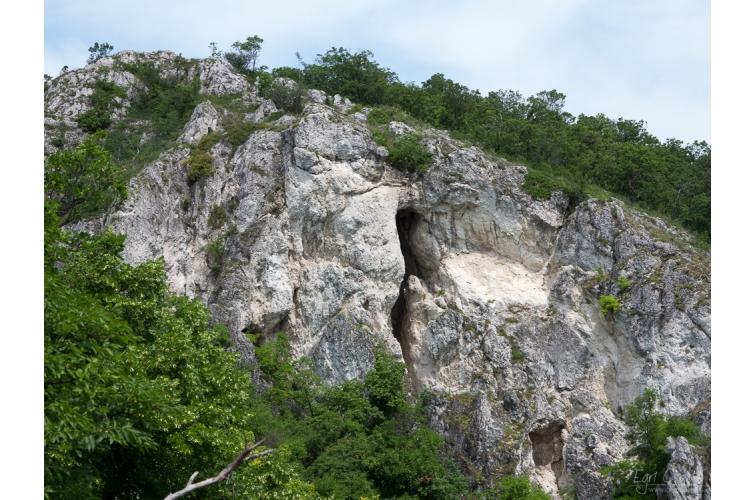 A Kőlik-völgy barlangjai 7
