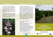 Küzdelem az özönnövények ellen a Csévharaszti-borókás területén