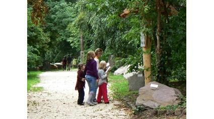 Ismerkedés a Kőpark tanösvénnyel (Fotó: Halász Ferenc)
