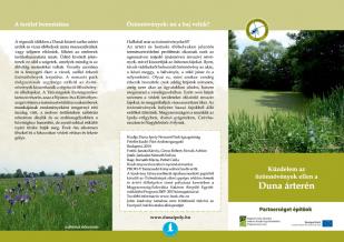 Küzdelem az özönnövények ellen a Duna árterén