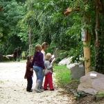 Ismerkedés a Kőpark tanösvénnyel