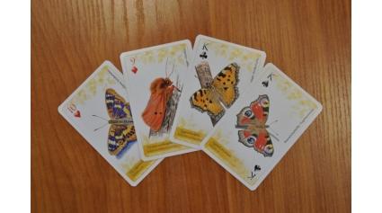 Lepkés kártya