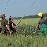 A MAVIR szakemberei segítik a munkánkat (Fotó: Berkó Gyöngyi)