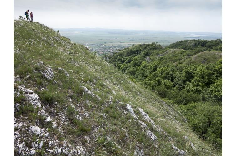 A Kőlik-völgy barlangjai 5