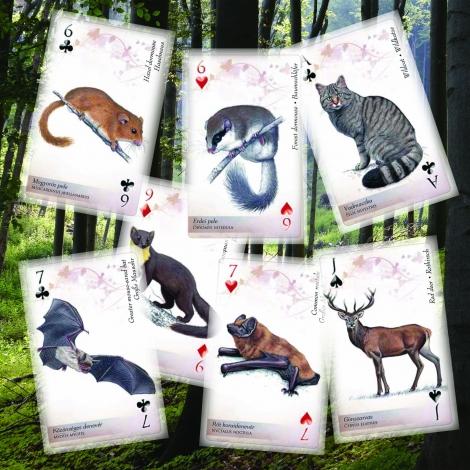 emlős kártya