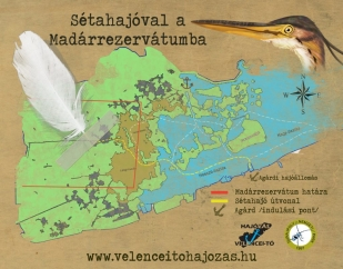 Sétahajóval az úszólápok között (Forrás: velenceitohajozas.hu)