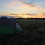 Hajnal az ürgeőrző táborban (Fotó: Klébert Antal)