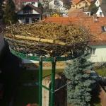 Beköltözésre készen (Fotó: Novák Adrián)