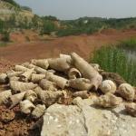 """Gánt """"kincsei"""" a bauxit-bányában (Fotó: Halász Antal)"""