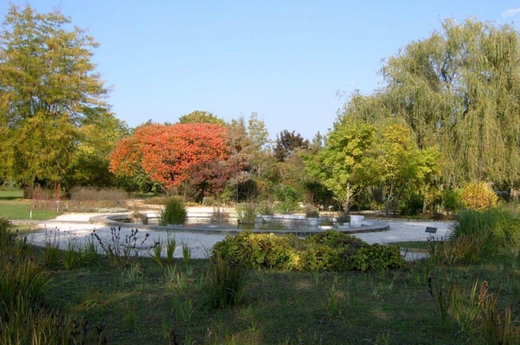 Ősz felé közeledve (forrás: www.gynki.hu)