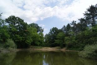 A Jági-tó