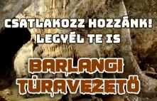 barlangi állás
