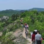 A pilisi len nyomában a Borbás-gerincen (fotó: Morvai Gyöngyi)