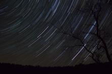 Csillagok (Fotó: Kolláth Zoltán)