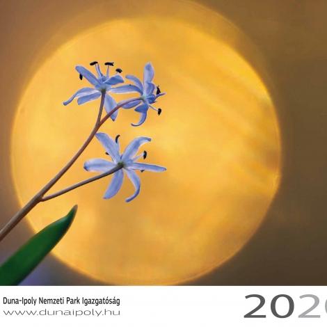 DINPI falinaptár 2020 címplap