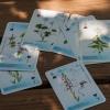 A DINPI védett növényei francia kártya