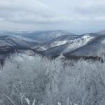 Téli panoráma Dobogókőről (fotó: Menráth Réka)