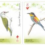 A Duna-Ipoly Nemzeti Park védett madarai, francia kártyacsomag