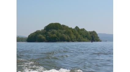 Duna (Fotó: Takáts Margit)