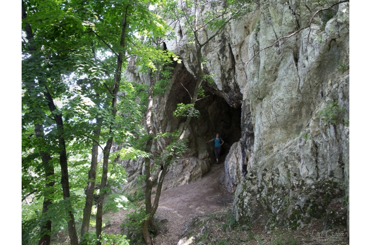 Csévi-barlang 7