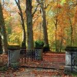 Az Arborétum ősszel (fotó: Gehring János)