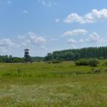 Páskom legelő (fotó: Selmeczi-Kovács Ádám)