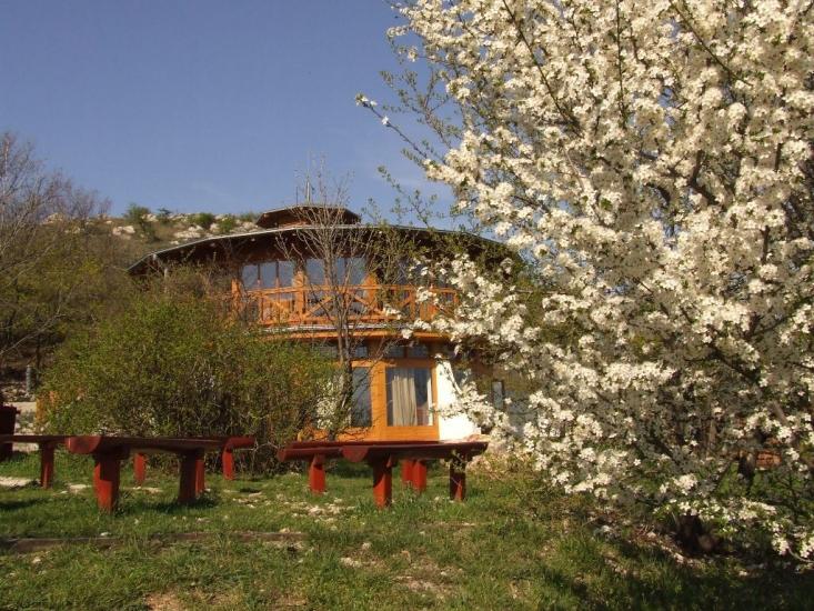 Tavasz a Sas-hegyen (fotó: Pethő Judit)