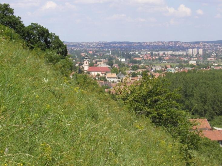 Kakukk-hegyi látkép (Fotó: Halász Antal)