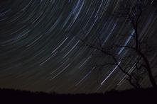 Éjszakai égbolt (Fotó: Kolláth Zoltán)