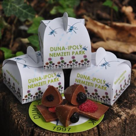 Kézműves DINPI csokoládé, 20 g