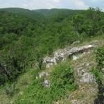Csáberényi-völgy (Fotó: Halász Antal)