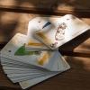 A DINPI védett lepkéi francia kártya