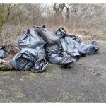 Illegálisan elhelyezett hulladék védett tarka sáfrány élőhelyén
