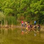 Egy kis vízvizsgálat a Jági-tó partján (fotó: Merza Péter)