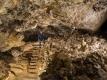 Sátorkőpusztai-barlang 9