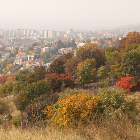 Kilátás fővárosunkra