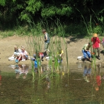 Iskolai csoport vízbiológia foglalkozása a Jági-tó partján
