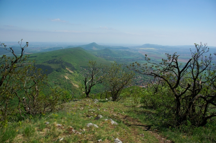 Pilisi Bioszféra Rezervátum – kilátás a Pilis-tetőről (Fotó: Novák Adrián)