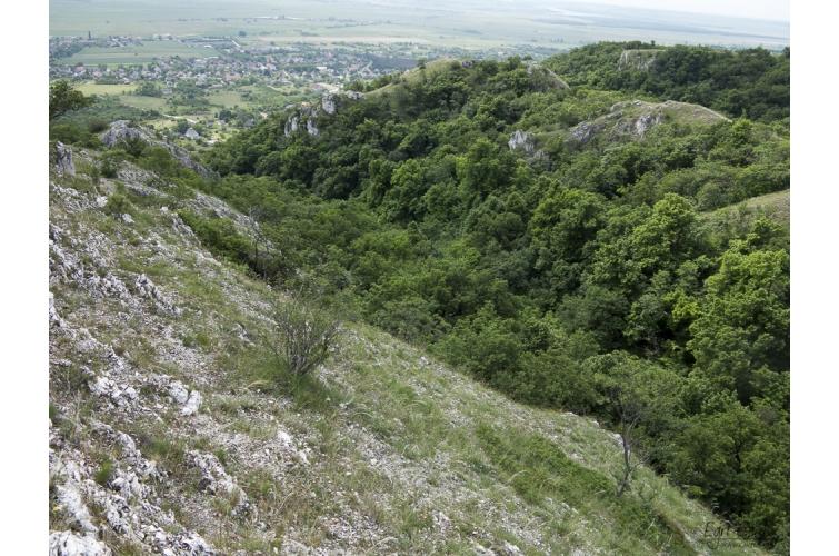 A Kőlik-völgy barlangjai 4