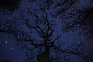Csillagséták