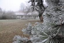 Jókai-kert télen (Fotó: Kálmán Gergely)