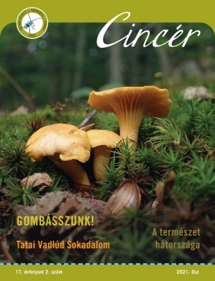 Cincér újság 2021 ősz címlap