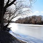 Befagyott Duna mellékág (Fotó: Berkó Gyöngyi)