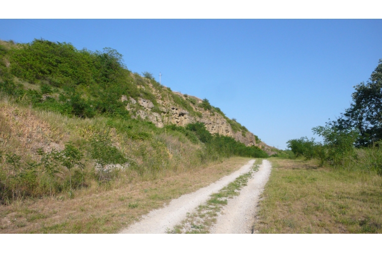 Lábatlani Köszörűkő-bánya földtani alapszelvény