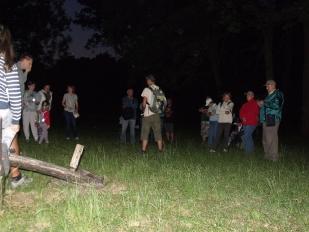 Selyem-réti tanösvény éjszaka