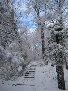 Jókai-kert télen
