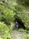 Jankovich-barlang 4