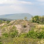 Borbás-gerinc, fokozottan védett terület