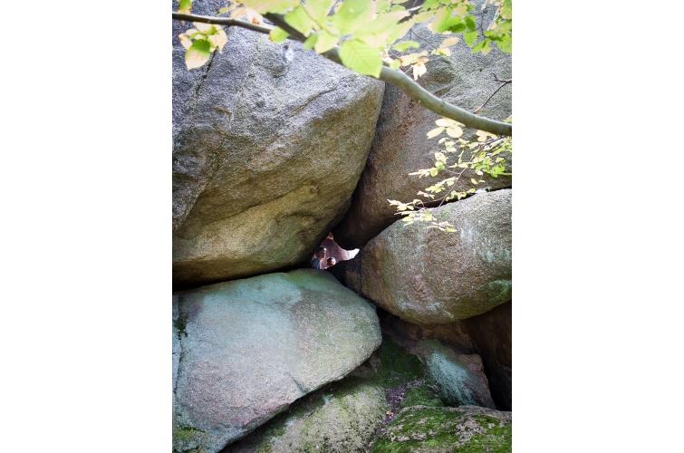 Zsivány-barlang 4