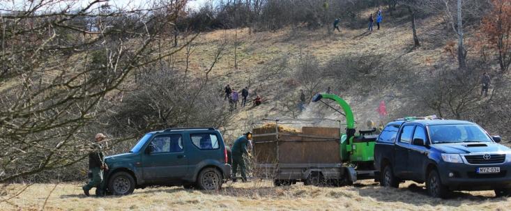 Önkéntes munka a Gödöllői-dombvidék Tájvédelmi Körzetben